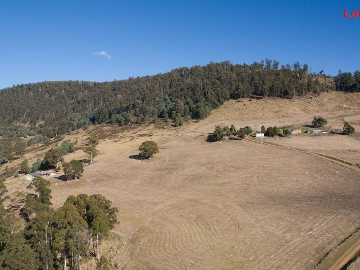 Lot 2 & 4 Moss Beds Road, Lachlan