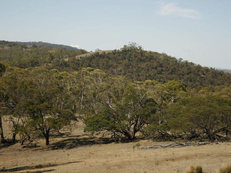 Corrowong Road, Delegate, NSW 2633