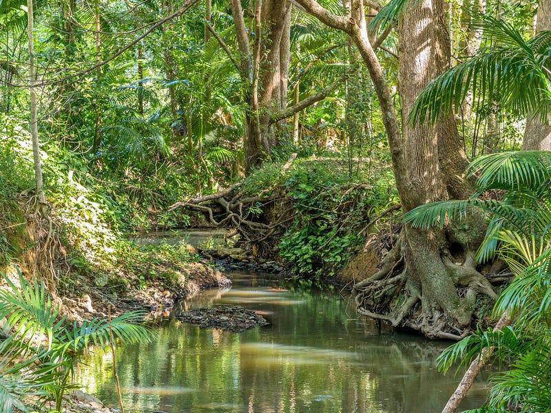 4 Raven Place, Clothiers Creek, NSW 2484
