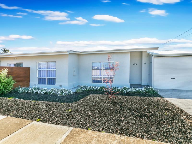 19 Nilpena Avenue, Park Holme, SA 5043