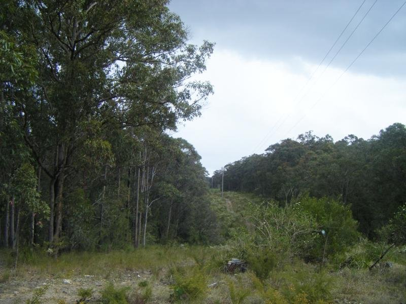 Lot 5 Buckets Way, Allworth, NSW 2425