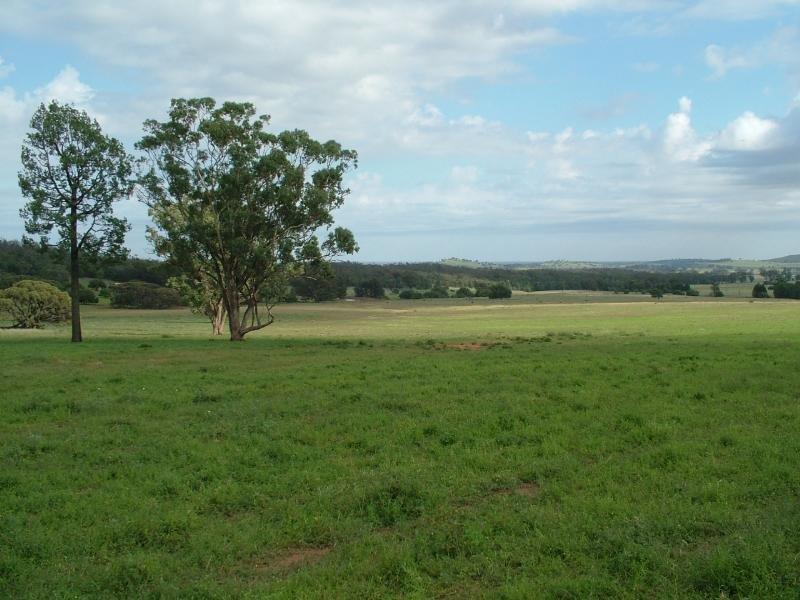 Glen Harvey, Peak Hill, NSW 2869