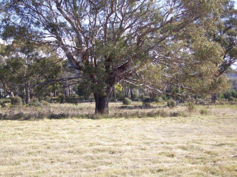 4 / 3386 Nugent Road, Buckland, Tas 7190