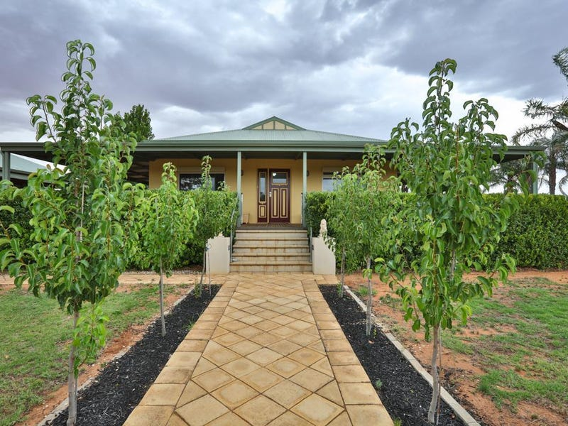 229 Main Avenue, Merbein South, Vic 3505