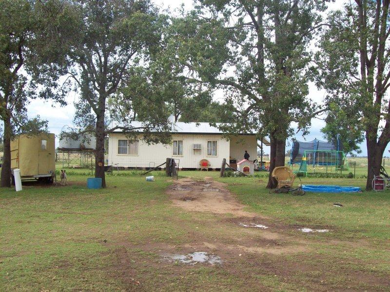 817 Quambone Road, Coonamble, NSW 2829