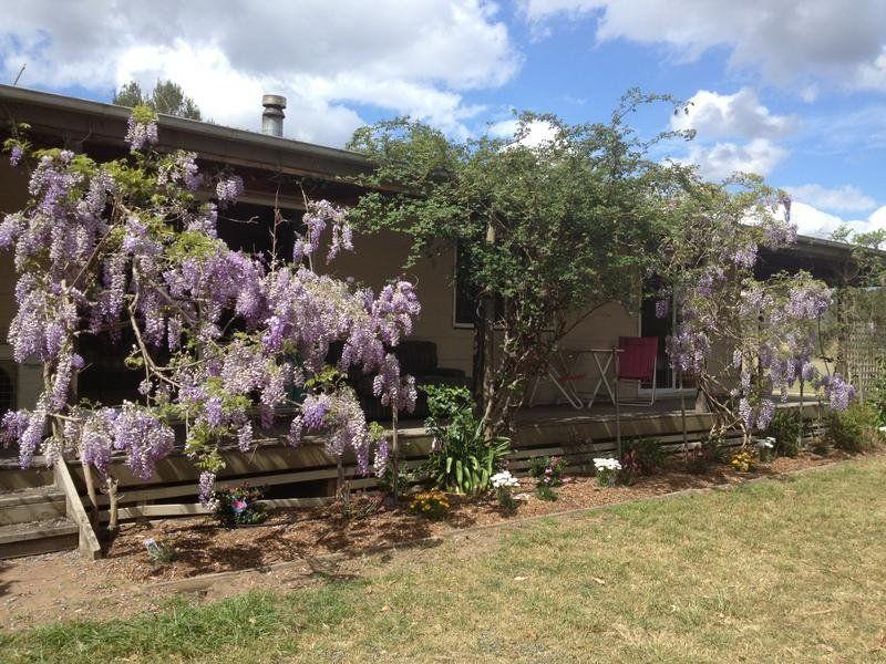 42 Hill Street, Broke, NSW 2330
