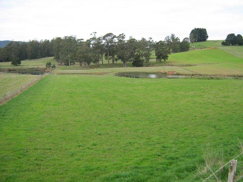 99 Allisons Road, Lower Barrington, Tas 7306