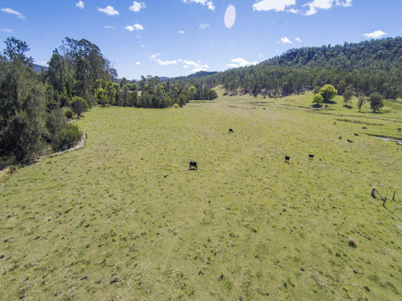 236 Smiths Creek Road, Copmanhurst, NSW 2460