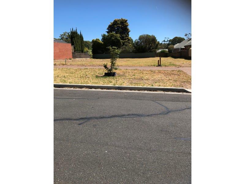 43 Hyland Terrace, Rosslyn Park, SA 5072