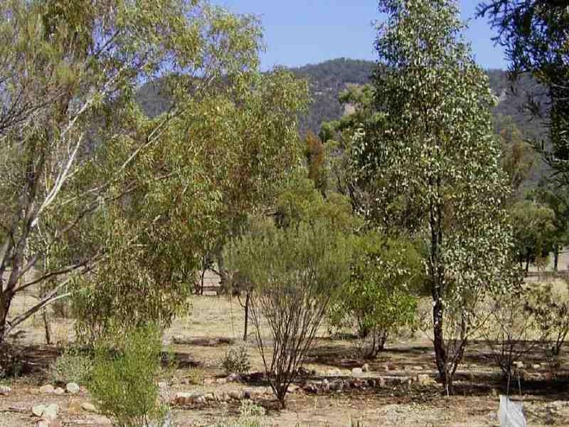 1 Diocesan Road, Melrose, SA 5483