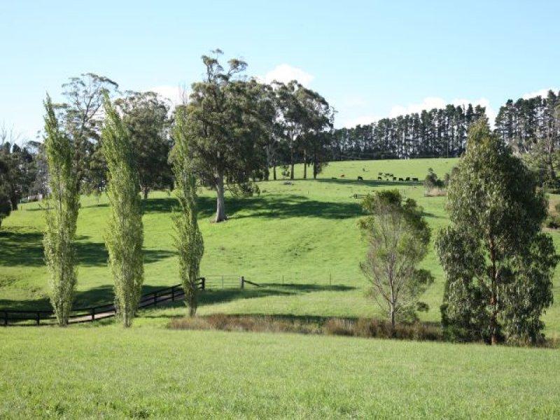 362 Myra Vale Road, Wildes Meadow, NSW 2577