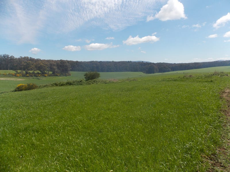 Lot 2, 99 PHEASANT CREEK ROAD, Kinglake, Vic 3763