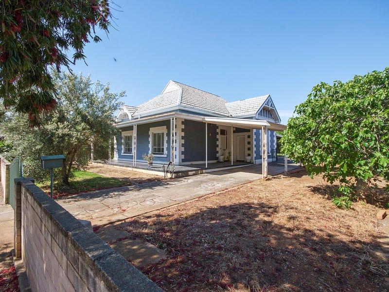 16 Amherst Avenue, Trinity Gardens, SA 5068