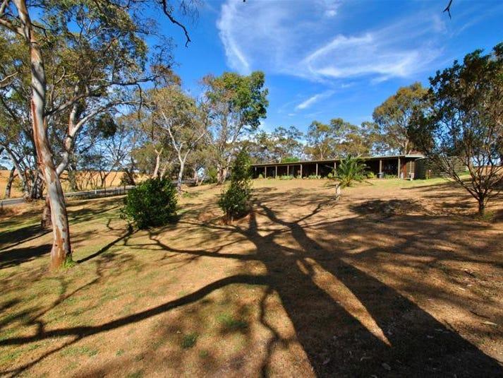 264 Menglers Hill Road, Tanunda, SA 5352