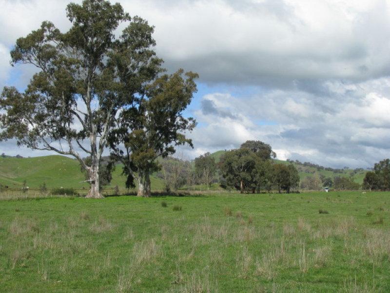 108C Spring Creek Road, Alexandra