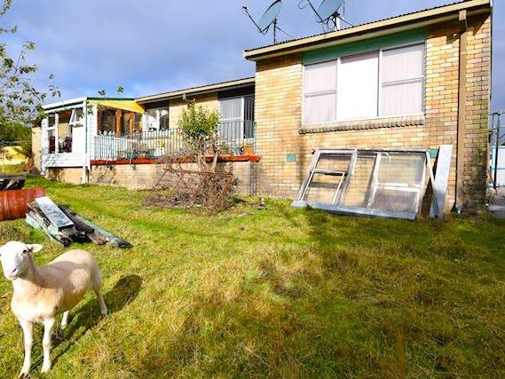 17 Little Quiggin Street, Waratah, Tas 7321