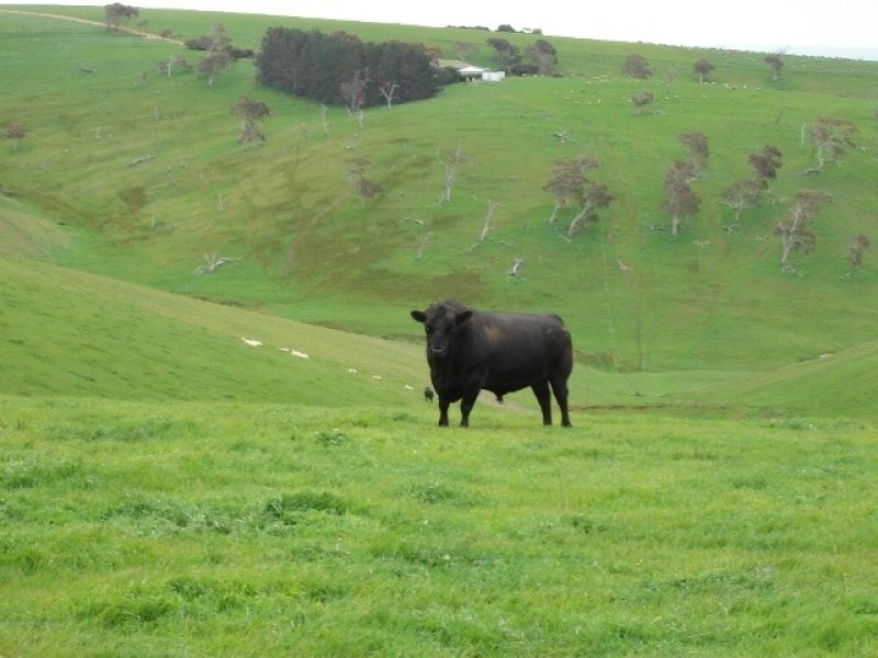 Lot 14 Myponga Beach Road, Myponga Beach, SA 5202