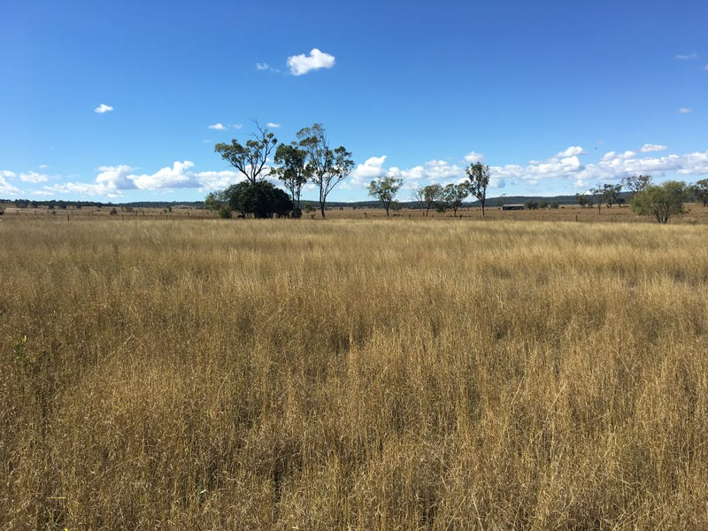 Lot 100 Oakey Cooyar Road, Rosalie Plains, Qld 4401