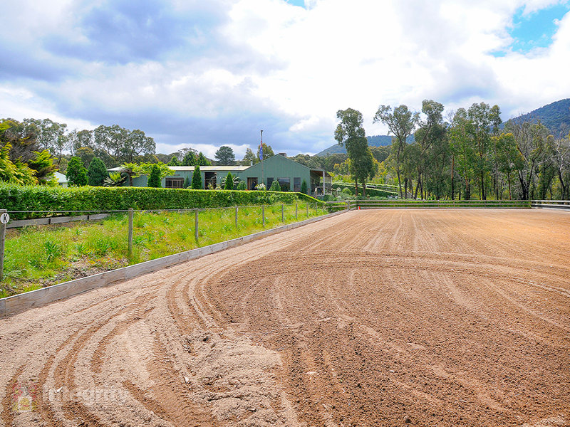 822 Chum Creek Road, Chum Creek, Vic 3777