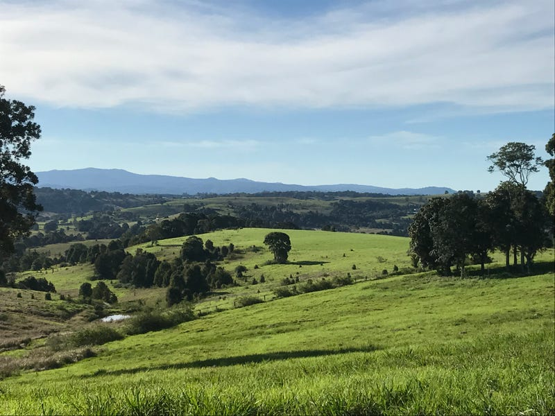 Lot 402 Cameron Park, McLeans Ridges, NSW 2480