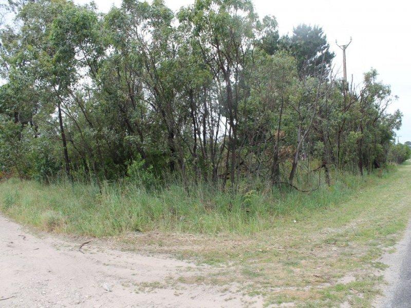 Lot 51, Hakea Drive, Millicent, SA 5280