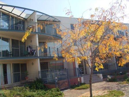 35/2 Ranken Place, Belconnen, ACT 2617