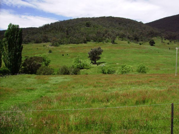 00 Pine Mountain Creek Road, Pine Mountain, Vic 3709