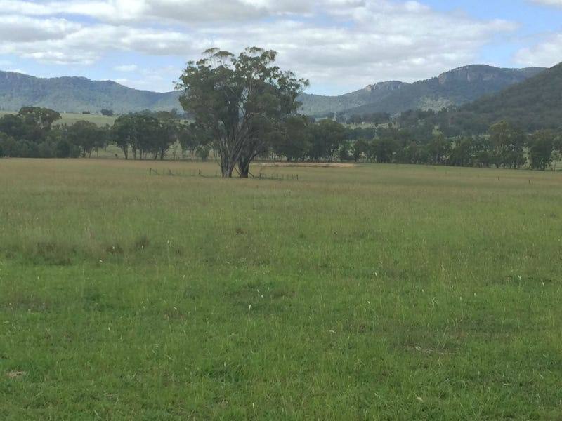 Lot 14 Dunville Loop Road, Rylstone, NSW 2849