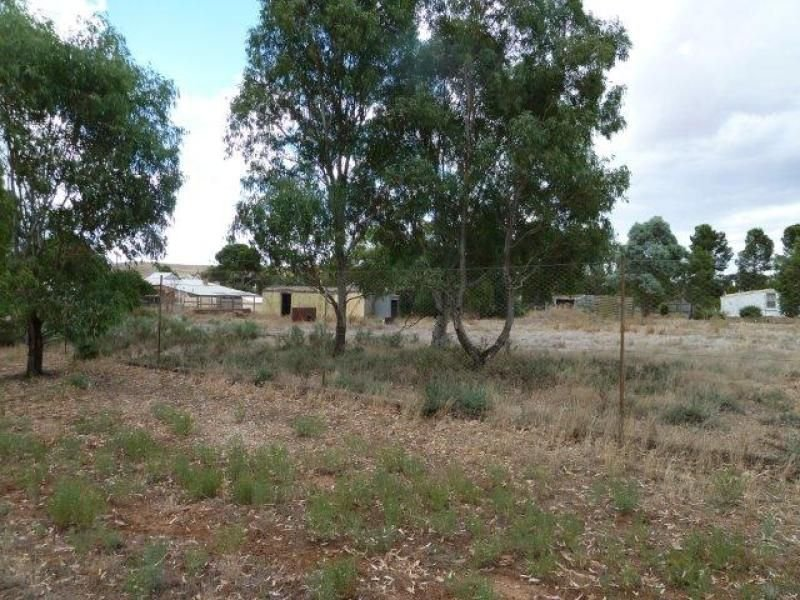 Lot 24, Lot 24 East Terrace, Yongala, SA 5493