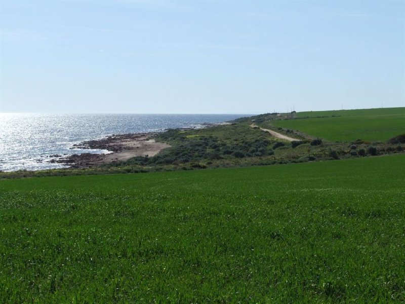 185.4Ha Myponie Point, Wallaroo Plain, SA 5556