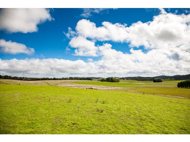 1182 Yalbraith Road, Taralga, NSW 2580